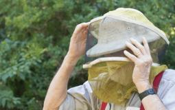 Beekeeping Veil