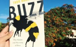 Best Beekeeping Books For Beginners