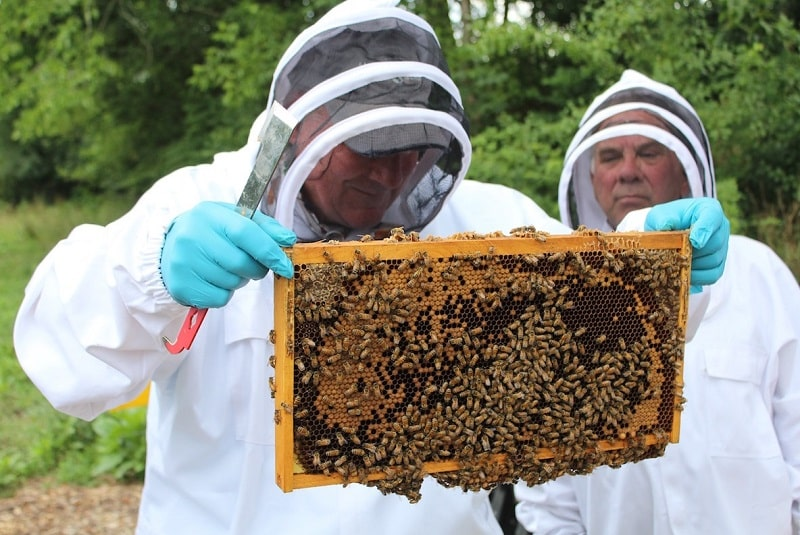 What are bee suitsmade of?