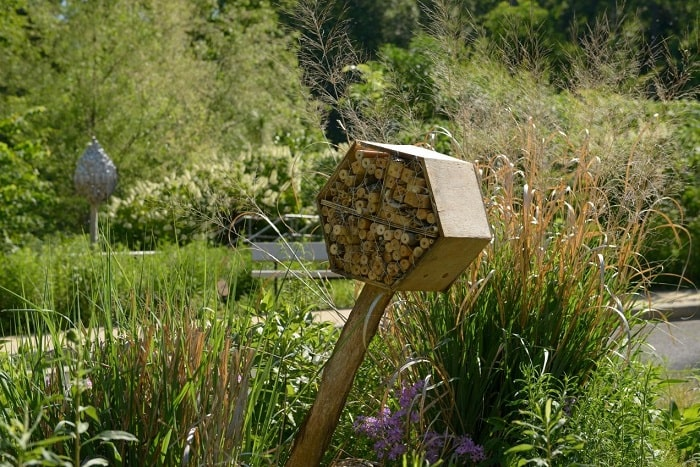 How To Attract Bees To A Bee House