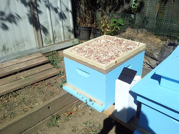 How To Build A Quilt Box For A Langstroth Beehive