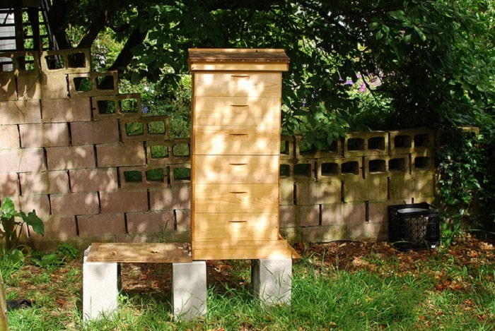 How High Should A Beehive Be Off The Ground