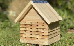 Best Mason Bee Houses