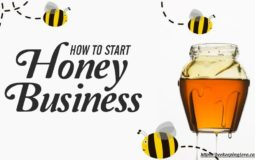 How To Get Started In The Honey Business