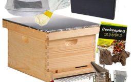 The Brushy Mountain Bee Farm English Garden Hive Beginner's Kit Review