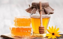 Can You Freeze Honey